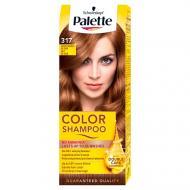 Color Shampoo szampon koloryzujący do 24 myć 317 Orzechowy Blond